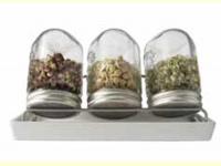 Bild für Eschenfelder Keimglas Komplett Sprossenglas Keramikschale