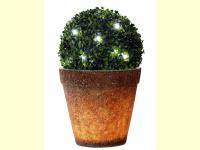 Bild für Heitronic LED Buxuskugel Buchsbaum Lichterkette mit 30 LED für aussen und innen